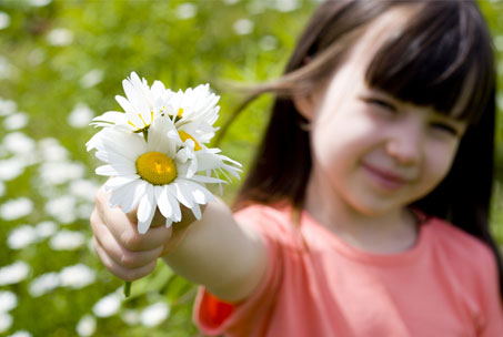 home natural remedies for allergies